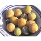 Gelber Spilling (Dattelpflaume)